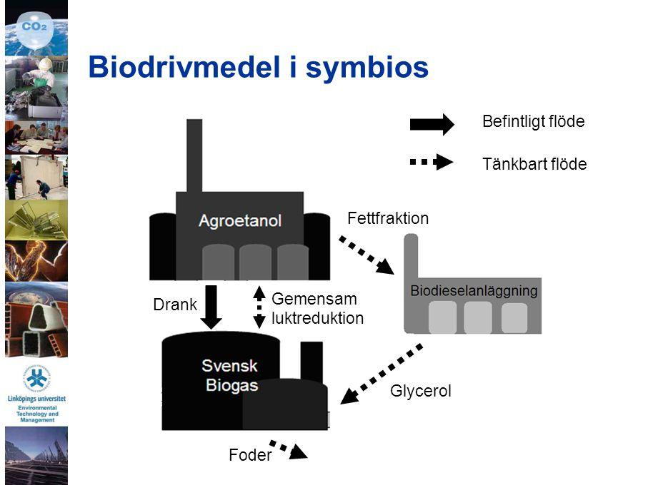 Biodrivmedel i symbios Drank Gemensam luktreduktion Glycerol Fettfraktion Foder Befintligt flöde Tänkbart flöde