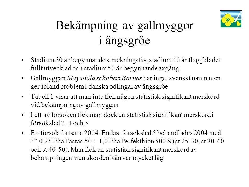 Bekämpning av gallmyggor i ängsgröe Stadium 30 är begynnande sträckningsfas, stadium 40 är flaggbladet fullt utvecklad och stadium 50 är begynnande ax