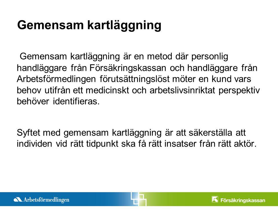 Presentationstitel Månad 200X Sida 2 Gemensam kartläggning Gemensam kartläggning är en metod där personlig handläggare från Försäkringskassan och hand