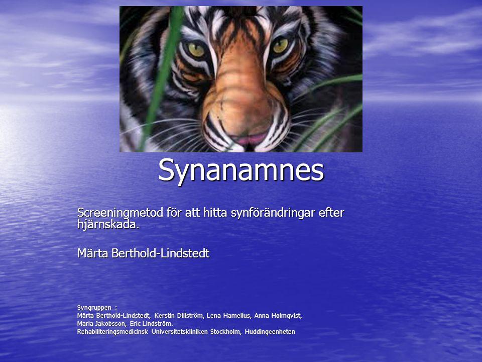 Synanamnes Screeningmetod för att hitta synförändringar efter hjärnskada.
