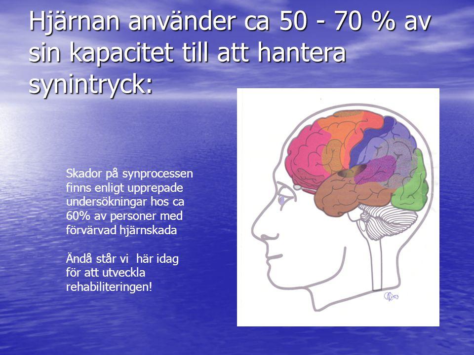Hjärnan använder ca 50 - 70 % av sin kapacitet till att hantera synintryck: Skador på synprocessen finns enligt upprepade undersökningar hos ca 60% av personer med förvärvad hjärnskada Ändå står vi här idag för att utveckla rehabiliteringen!