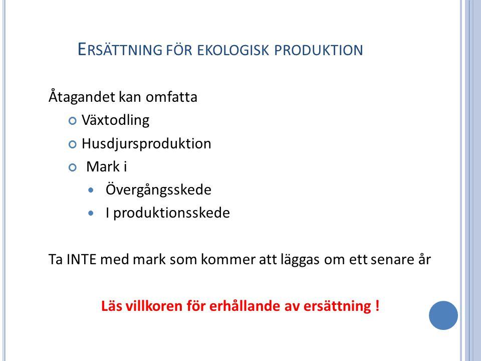 E RSÄTTNING FÖR EKOLOGISK PRODUKTION Åtagandet kan omfatta Växtodling Husdjursproduktion Mark i Övergångsskede I produktionsskede Ta INTE med mark som kommer att läggas om ett senare år Läs villkoren för erhållande av ersättning !