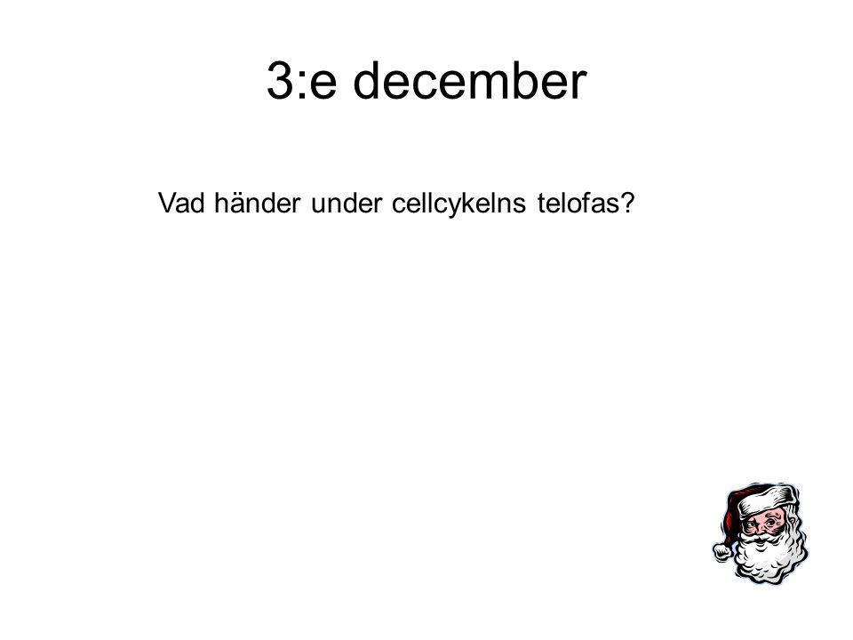3:e december Vad händer under cellcykelns telofas?