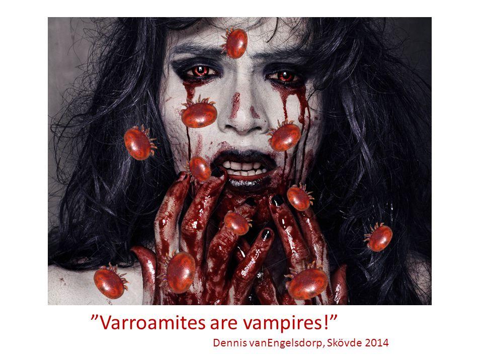 """Och glöm inte: """"Varroamites are vampires!"""" Dennis vanEngelsdorp, Skövde 2014"""