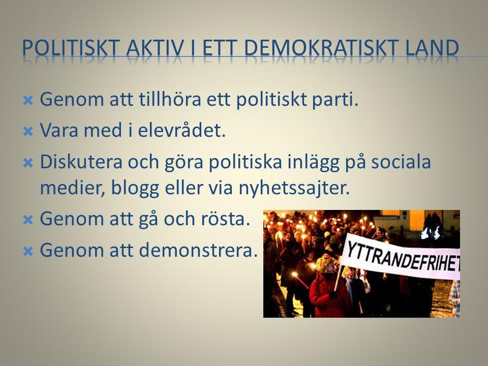  Genom att tillhöra ett politiskt parti.  Vara med i elevrådet.  Diskutera och göra politiska inlägg på sociala medier, blogg eller via nyhetssajte
