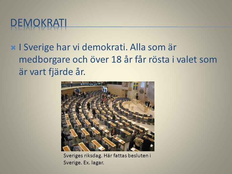  I Sverige har vi demokrati. Alla som är medborgare och över 18 år får rösta i valet som är vart fjärde år. Sveriges riksdag. Här fattas besluten i S