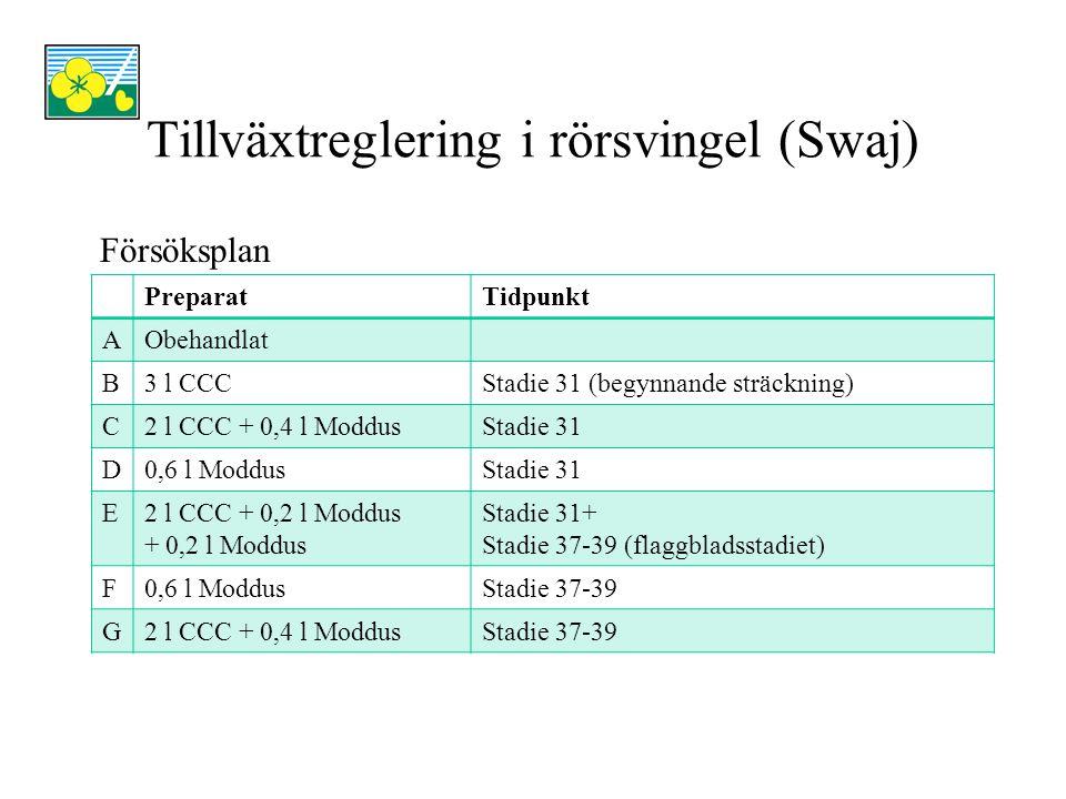 Tillväxtreglering i rörsvingel (Swaj) PreparatKg frö/ha 2008Rel.tal 2008 Kg frö/ha 2009 Rel.tal 2009 AObehandlat9211001 533100 B3 l CCC803871 545101 C2 l CCC + 0,4 l Moddus1 1021201 672109 D0,6 l Moddus1 1571261 700111 E2 l CCC + 0,2 l Moddus + 0,2 l Moddus 1 0701161 718112 F0,6 l Moddus9941081 831119 G2 l CCC + 0,4 l Moddus1 0031091 832120 LSD18984
