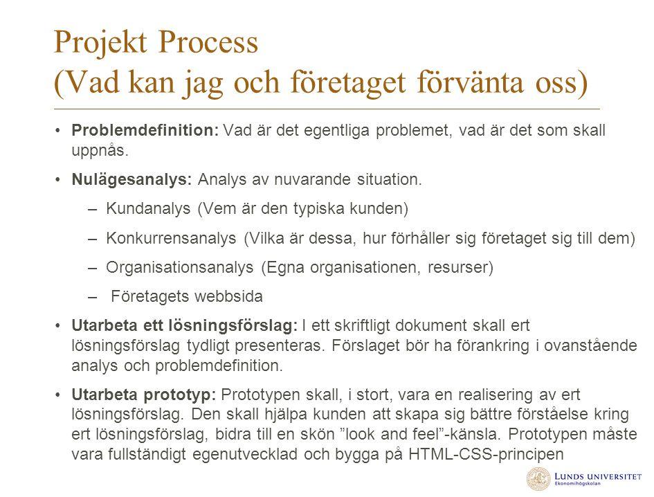 Projekt Process (Vad kan jag och företaget förvänta oss) Problemdefinition: Vad är det egentliga problemet, vad är det som skall uppnås. Nulägesanalys