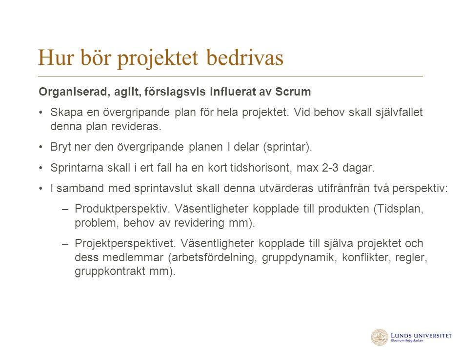 Hur bör projektet bedrivas Organiserad, agilt, förslagsvis influerat av Scrum Skapa en övergripande plan för hela projektet. Vid behov skall självfall