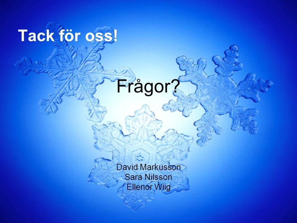 Tack för oss! Frågor David Markusson Sara Nilsson Ellenor Wiig