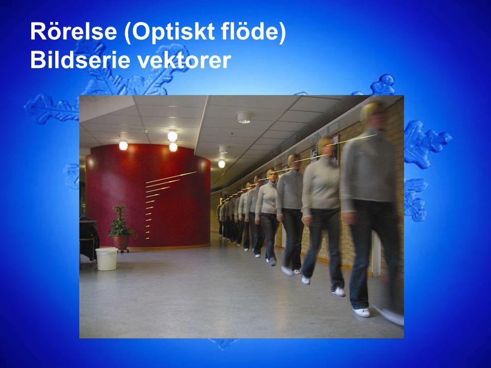 Rörelse (Optiskt flöde) Bildserie vektorer