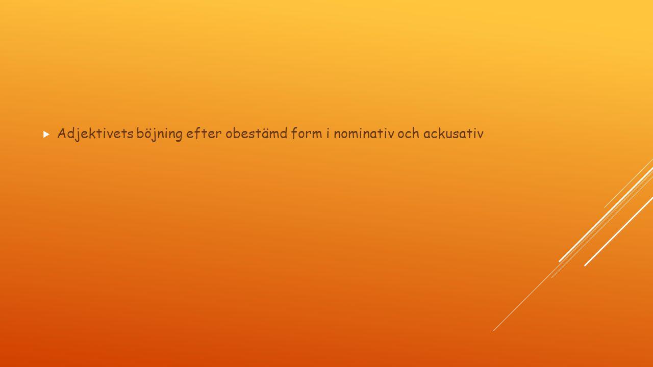  Adjektivets böjning efter obestämd form i nominativ och ackusativ