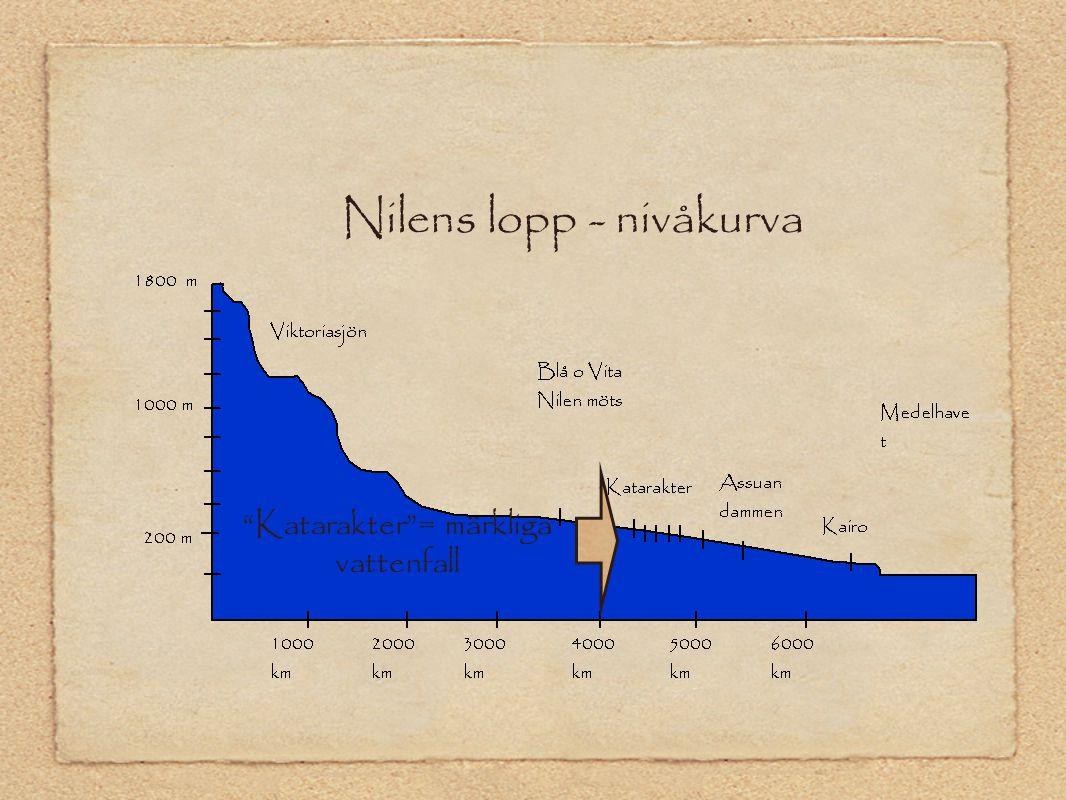 """Nilens lopp - nivåkurva """"Katarakter""""= märkliga vattenfall"""