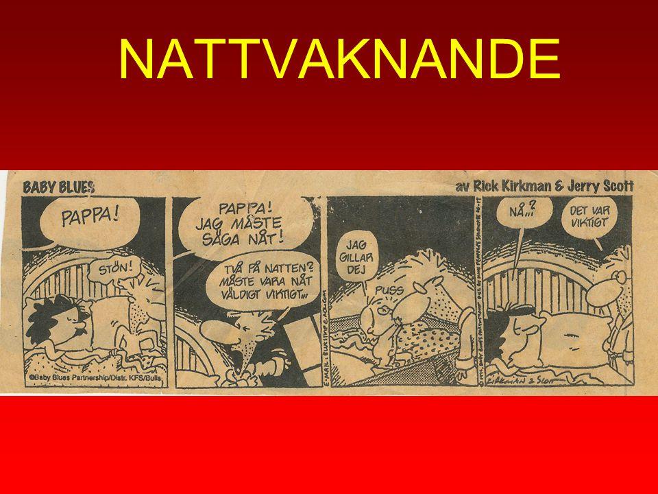NATTVAKNANDE