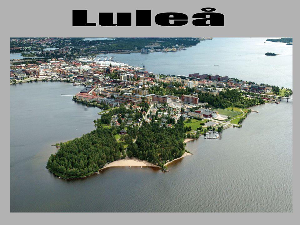 Luleå Lokaltrafik AB Ange Björk Vd