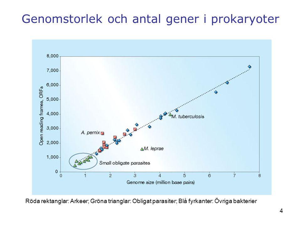 4 Genomstorlek och antal gener i prokaryoter Röda rektanglar: Arkeer; Gröna trianglar: Obligat parasiter; Blå fyrkanter: Övriga bakterier