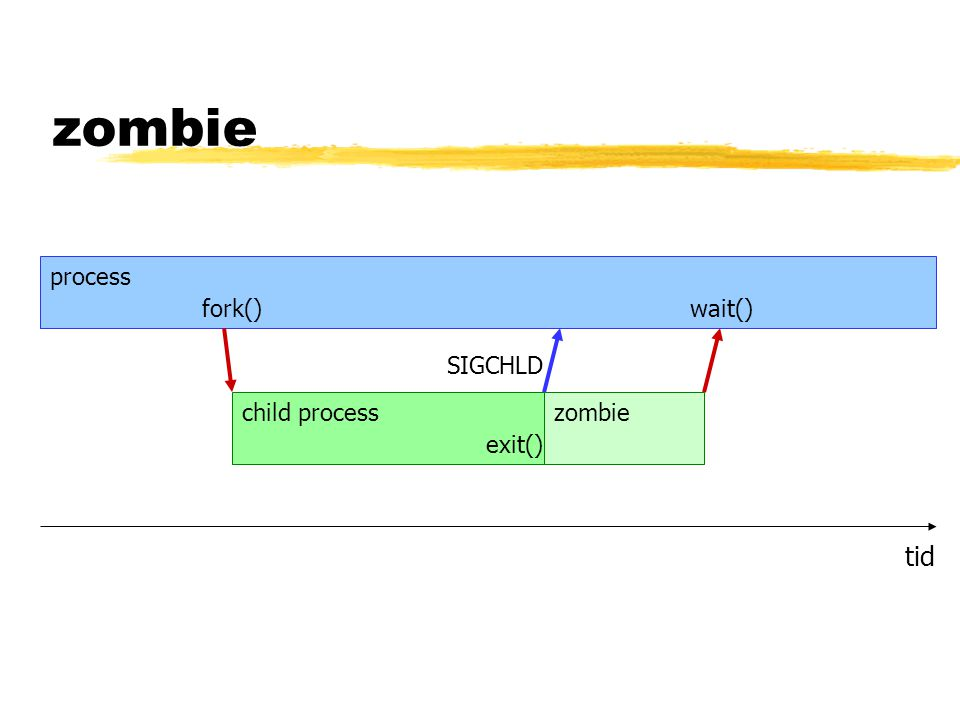 zombie tid process fork() child process exit() wait() zombie SIGCHLD
