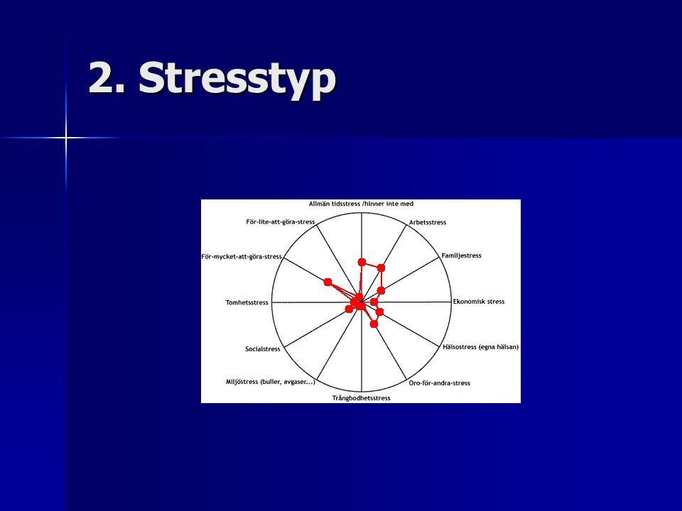 2. Stresstyp