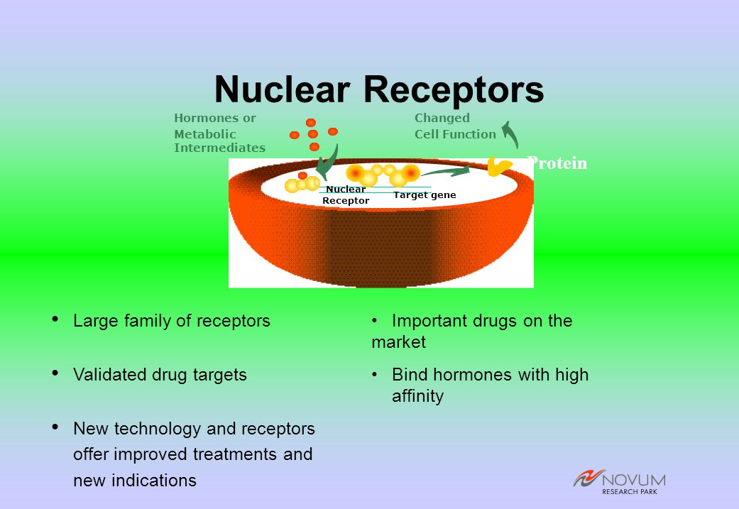 Nuclear Receptors Large family of receptorsImportant drugs on the market Validated drug targetsBind hormones with high affinity New technology and receptors offer improved treatments and new indications Target gene Nuclear Receptor Hormones or Metabolic Intermediates Protein Changed Cell Function