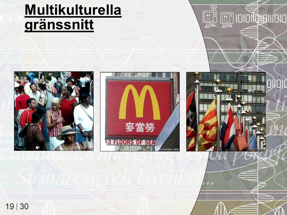 30 19 Multikulturella gränssnitt