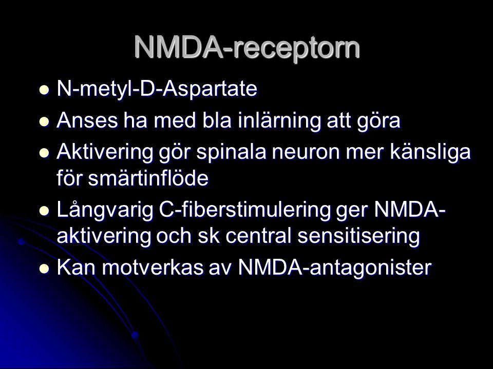 NMDA-receptorn N-metyl-D-Aspartate N-metyl-D-Aspartate Anses ha med bla inlärning att göra Anses ha med bla inlärning att göra Aktivering gör spinala neuron mer känsliga för smärtinflöde Aktivering gör spinala neuron mer känsliga för smärtinflöde Långvarig C-fiberstimulering ger NMDA- aktivering och sk central sensitisering Långvarig C-fiberstimulering ger NMDA- aktivering och sk central sensitisering Kan motverkas av NMDA-antagonister Kan motverkas av NMDA-antagonister