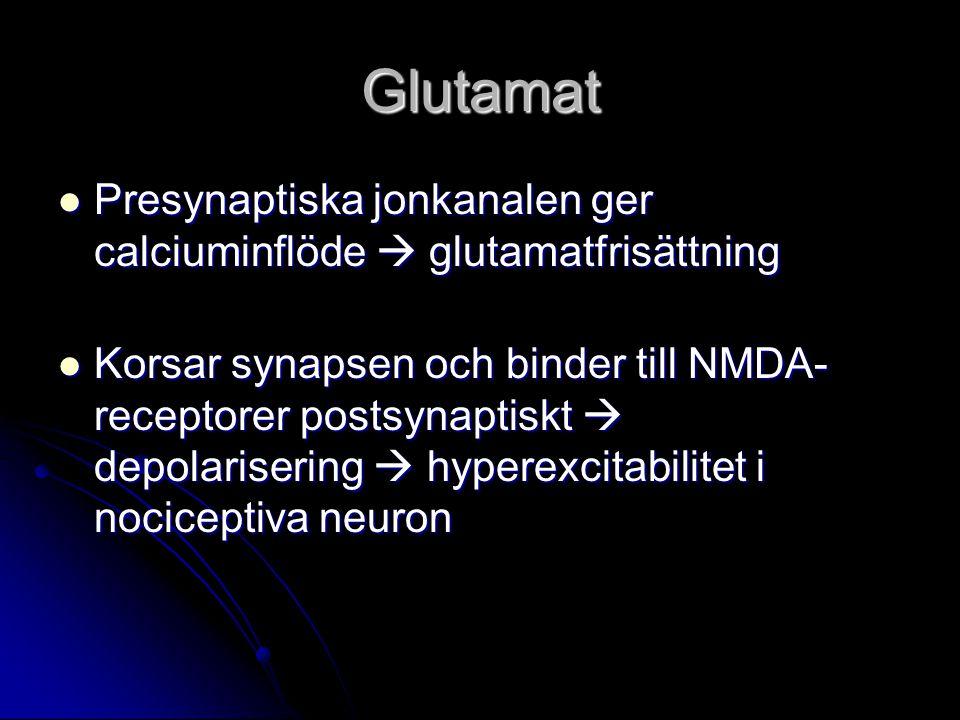 Glutamat Presynaptiska jonkanalen ger calciuminflöde  glutamatfrisättning Presynaptiska jonkanalen ger calciuminflöde  glutamatfrisättning Korsar synapsen och binder till NMDA- receptorer postsynaptiskt  depolarisering  hyperexcitabilitet i nociceptiva neuron Korsar synapsen och binder till NMDA- receptorer postsynaptiskt  depolarisering  hyperexcitabilitet i nociceptiva neuron