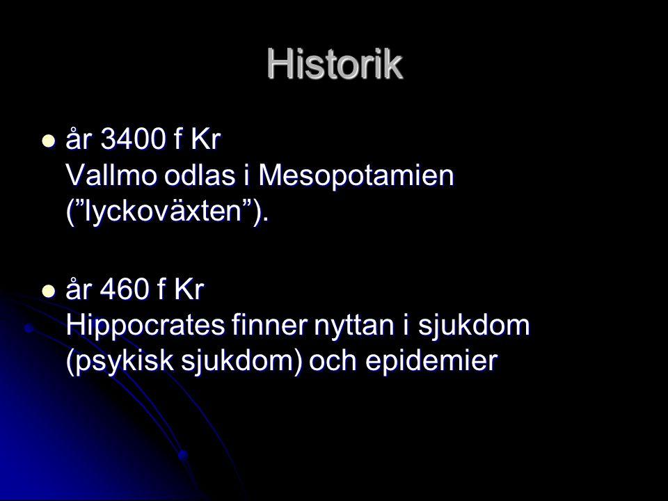 """Historik år 3400 f Kr Vallmo odlas i Mesopotamien (""""lyckoväxten""""). år 3400 f Kr Vallmo odlas i Mesopotamien (""""lyckoväxten""""). år 460 f Kr Hippocrates f"""