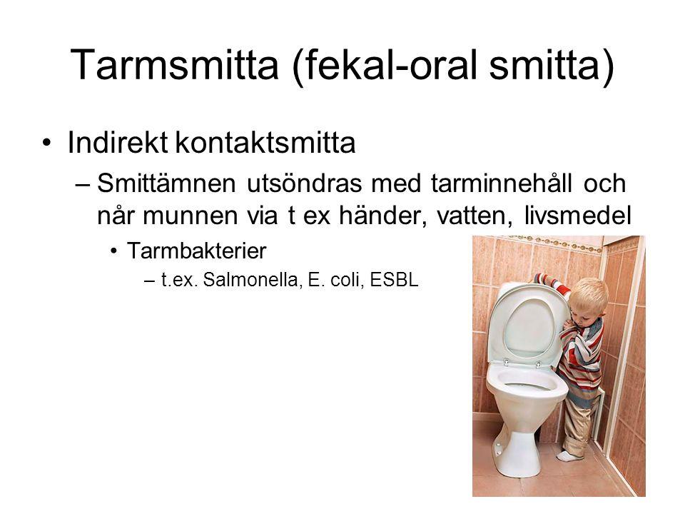 Tarmsmitta (fekal-oral smitta) Indirekt kontaktsmitta –Smittämnen utsöndras med tarminnehåll och når munnen via t ex händer, vatten, livsmedel Tarmbak