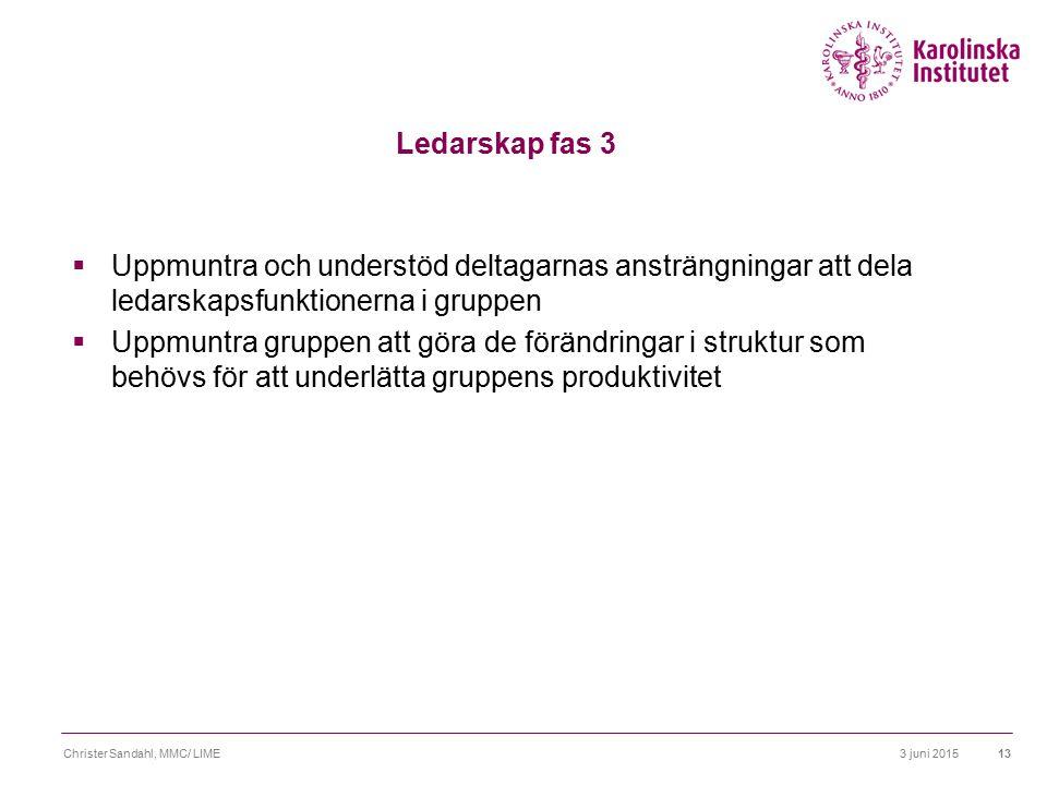 3 juni 2015Christer Sandahl, MMC/ LIME14 Ledarskap fas 4  Fortsätt att följa teamets process, var särskilt uppmärksam på tecken till regression  Granska regelbundet om gruppen har det organisatoriska stöd som den behöver.