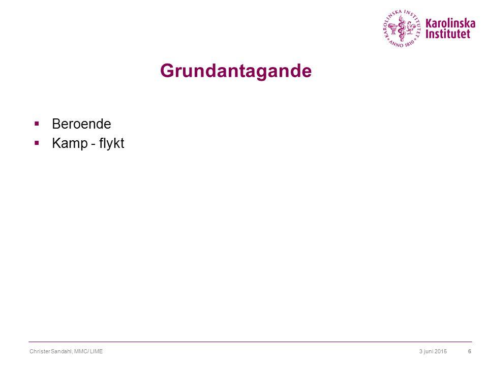 3 juni 2015Christer Sandahl, MMC/ LIME7 Grundantagande  Beroende  Kamp - flykt  Parbildning