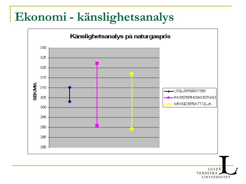 Ekonomi - känslighetsanalys