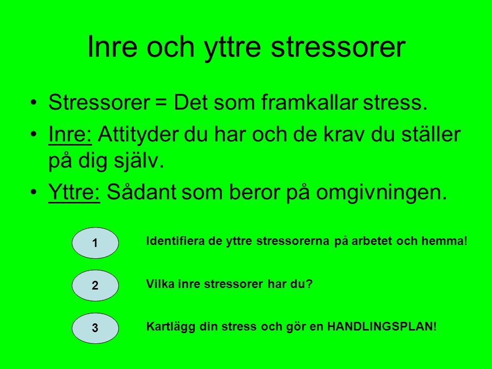 Inre och yttre stressorer Stressorer = Det som framkallar stress.
