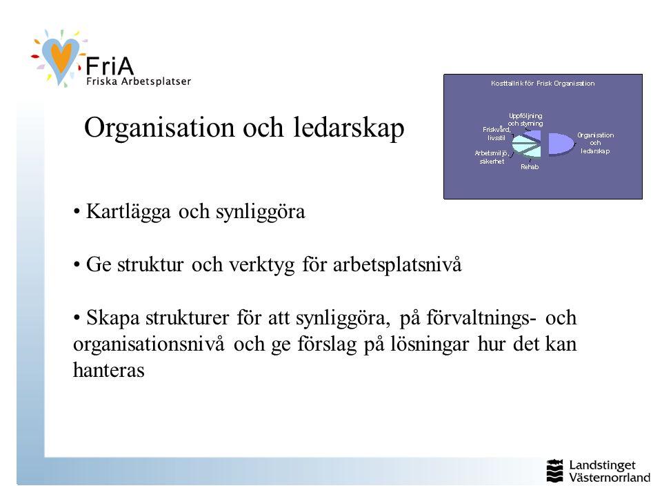 Organisation och ledarskap Kartlägga och synliggöra Ge struktur och verktyg för arbetsplatsnivå Skapa strukturer för att synliggöra, på förvaltnings- och organisationsnivå och ge förslag på lösningar hur det kan hanteras