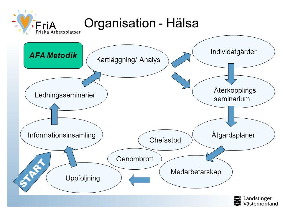 Organisation - Hälsa Informationsinsamling Ledningsseminarier Kartläggning/ Analys Återkopplings- seminarium Åtgärdsplaner Uppföljning START Medarbetarskap Genombrott Individåtgärder Chefsstöd AFA Metodik