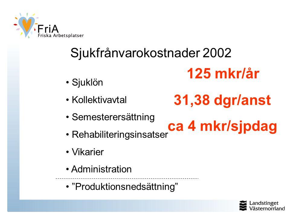 Sjukfrånvarokostnader 2002 Sjuklön Kollektivavtal Semesterersättning Rehabiliteringsinsatser Vikarier Administration Produktionsnedsättning 31,38 dgr/anst ca 4 mkr/sjpdag 125 mkr/år
