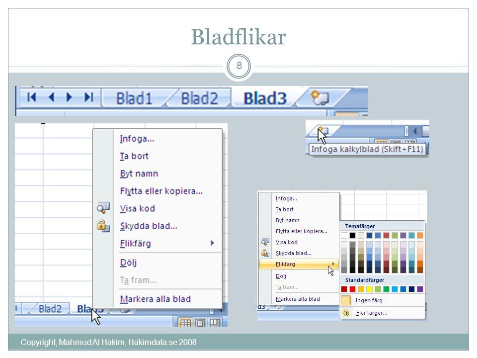 Bladflikar Copyright, Mahmud Al Hakim, Hakimdata.se 2008 8