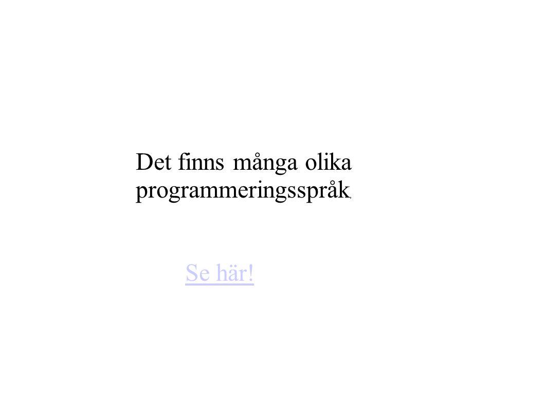Det finns många olika programmeringsspråk, Se här!