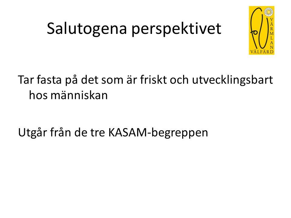 Salutogena perspektivet Tar fasta på det som är friskt och utvecklingsbart hos människan Utgår från de tre KASAM-begreppen