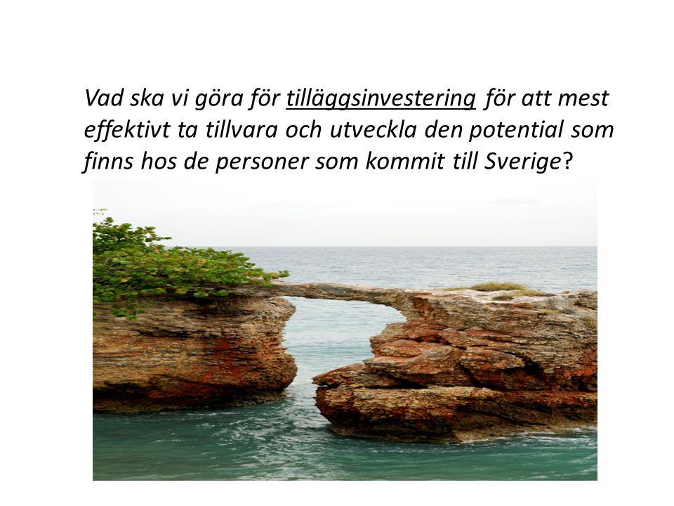 Vad ska vi göra för tilläggsinvestering för att mest effektivt ta tillvara och utveckla den potential som finns hos de personer som kommit till Sverige?
