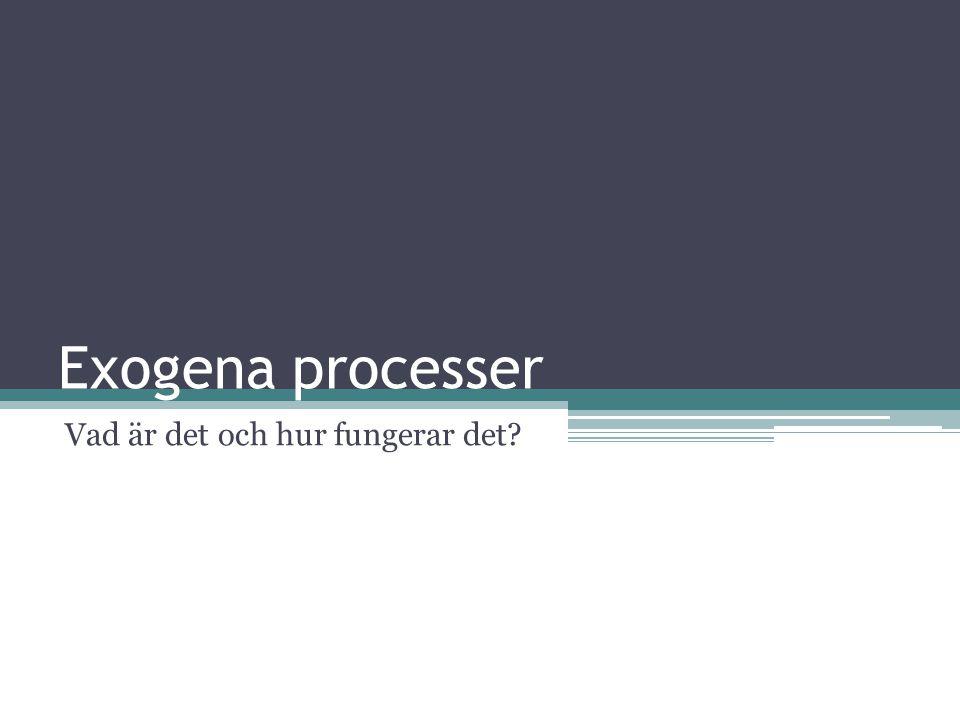 Exogena processer Vad är det och hur fungerar det?