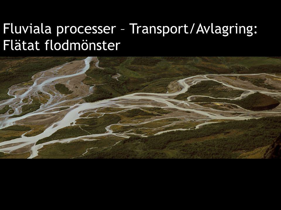 Fluviala processer – Transport/Avlagring: Flätat flodmönster