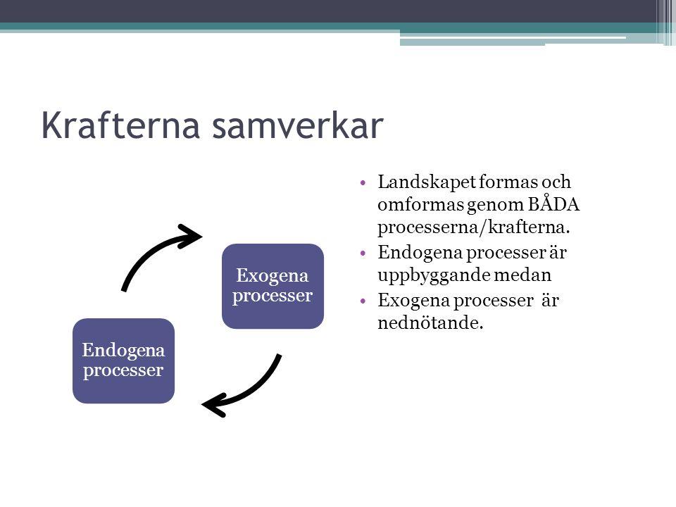 Krafterna samverkar Endogena processer Exogena processer Landskapet formas och omformas genom BÅDA processerna/krafterna. Endogena processer är uppbyg