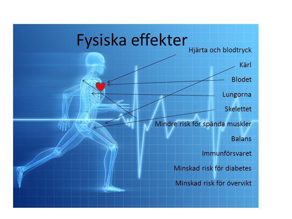 Fysiska effekter Hjärta och blodtryck Kärl Blodet Lungorna Skelettet Mindre risk för spända muskler Balans Immunförsvaret Minskad risk för diabetes Minskad risk för övervikt