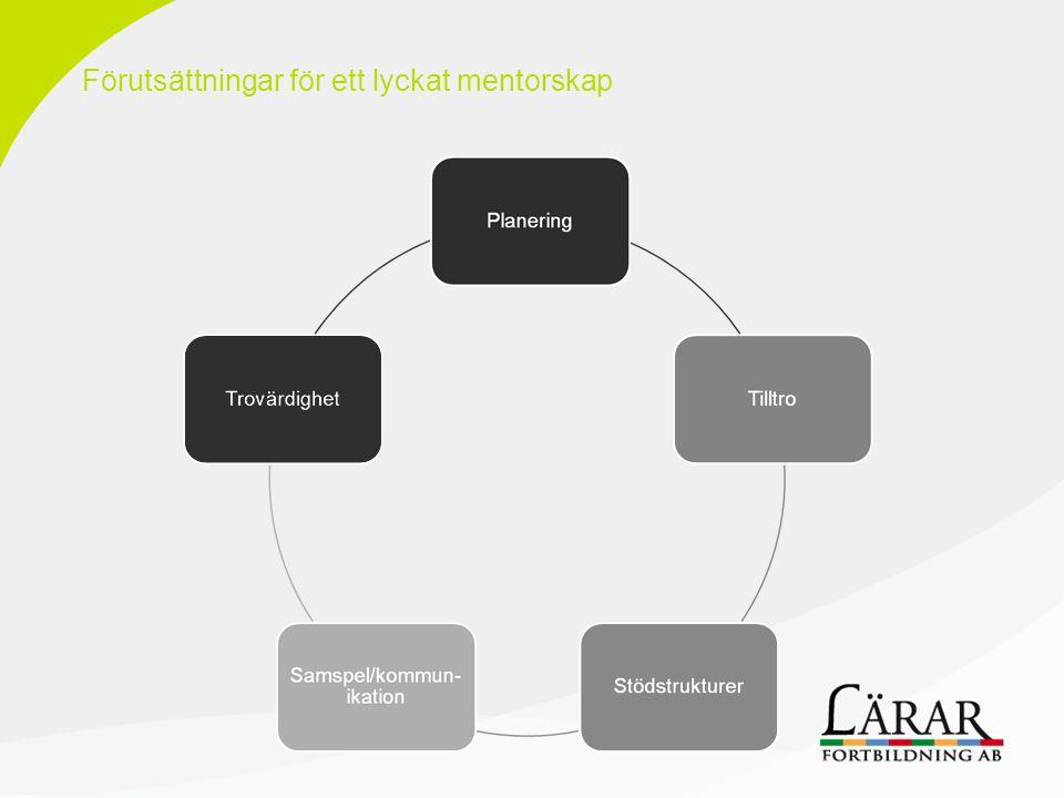 Förutsättningar för ett lyckat mentorskap