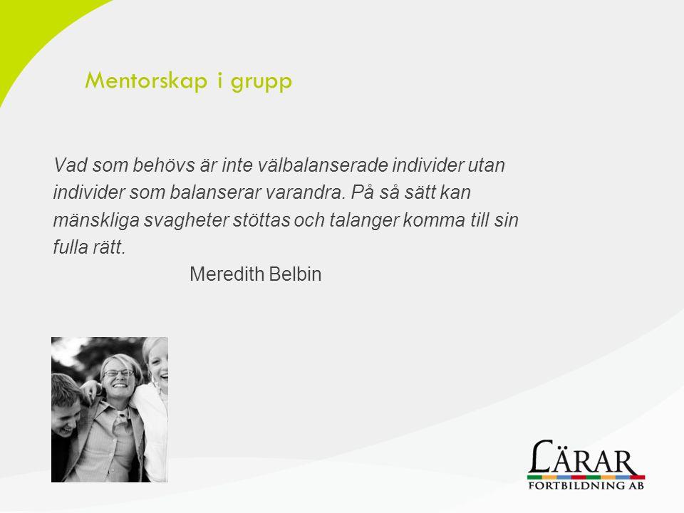 Mentorskap i grupp Vad som behövs är inte välbalanserade individer utan individer som balanserar varandra. På så sätt kan mänskliga svagheter stöttas
