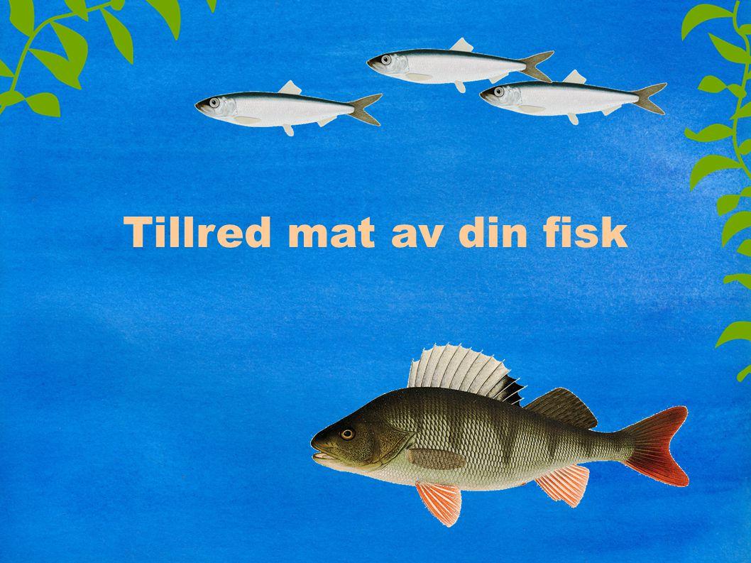 Fisk är gott – och hälsosamt Mångsidig och lätt mat Rikligt med proteiner, vitaminer och mineraler Rikligt med omega 3 fettsyror – nyttigt för hjärta och hjärna Ät fisk 2 gånger i veckan – variera mellan olika arter
