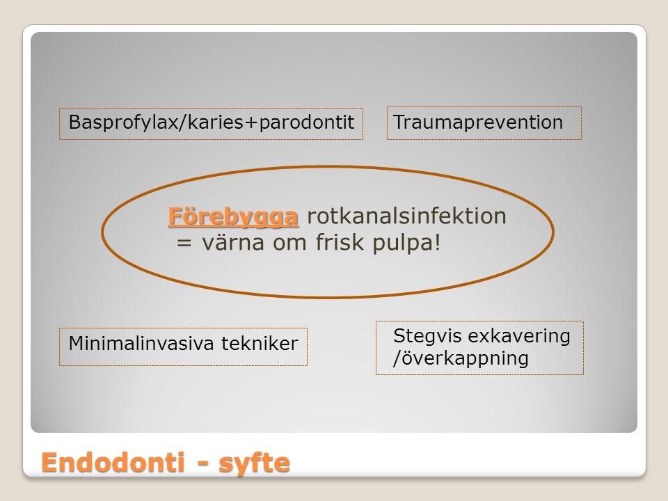 Endodonti - syfte Förebygga Förebygga rotkanalsinfektion = värna om frisk pulpa! Basprofylax/karies+parodontitTraumaprevention Minimalinvasiva teknike