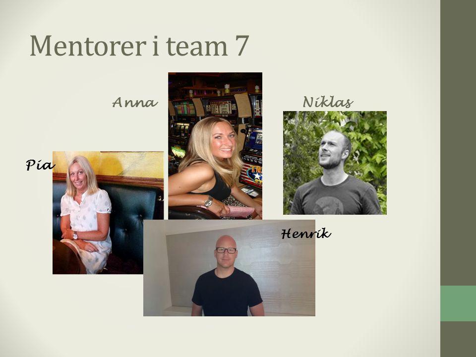 Mentorer i team 7 AnnaNiklas Henrik Pia