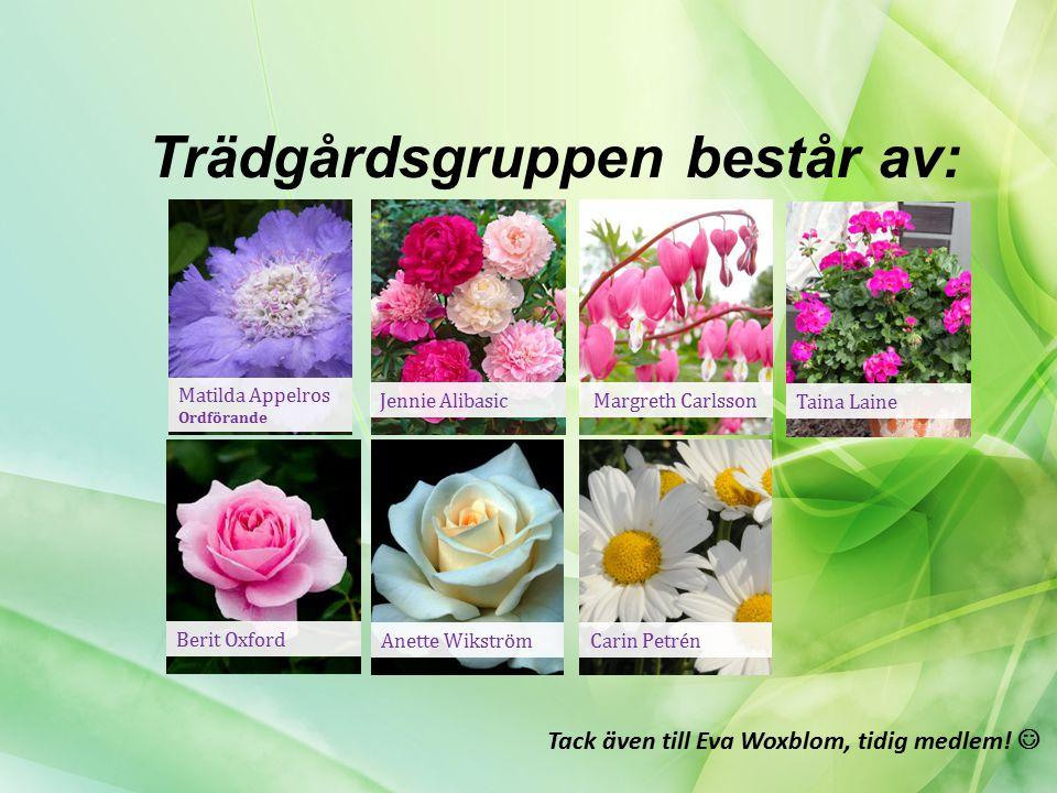 Trädgårdsgruppens mål: Försköna! Förbättra! Förvalta!