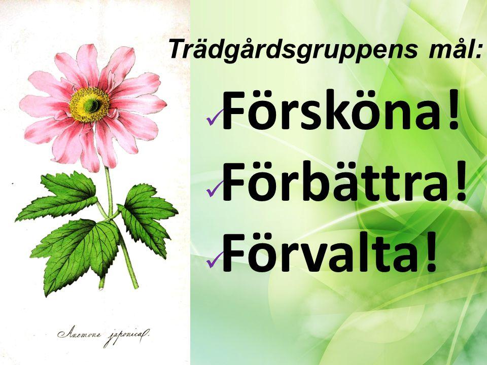 KLART/ LÖPANDE Säsongsblommor framsida (från våren 2015 och framåt) Ny rabatt & Spaljé vid portalen Reducera smällbärsbuskar så vi kan förbereda för annat Städdagarna höst & vår Planera, köpa in, plantera & sköta våra projekt som ej täcks av avtal med I&T Möte med trädgårdsmästare för tips & idéer Trädgårdsbesiktning tillsammans med I&T Skräpplockarpinnar & små soppåsar till alla portar KOMMANDE PROJEKT I ÅR Plantering av lökar i höst (rabatterna och baksida/grillplats) Potentiell sittplats, framsida Liten örtagård vid grillplatsen Något tillskott till framsidans rabatt i sommar Trädgårdsgruppens projekt 2015